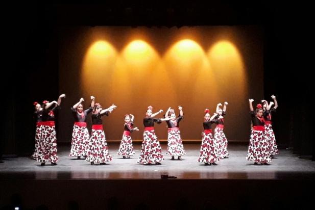 Moment del Festival Flamenc a l'Auditori Municipal Miquel Pont.    CEDIDA