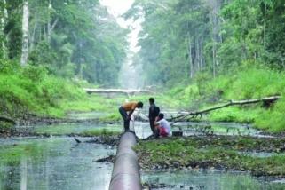 Fotograma de 'Lágrimas de aceite'. || CEDIDA