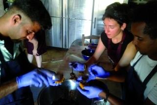 Cèlia Carbonell, treballant a la cuina del camp de refugiats de Quios, en la seva primera visita