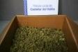 Decomís de dos quilos de marihuana al carrer Pare Borrell - CEDIDA