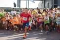 La cursa popular és una de les activitats esportives principals de la FM.