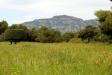 Vistes del Parc de Sant Llorenç des de Can Cadafalch, a mig camí entre Castellar i Sant Llorenç / Arxiu