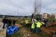 Els alumnes estan plantant aquests dies 25 arbres al voltant de l'Skate Park / AJ. CASTELLAR