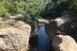 Un tram del riu Ripoll