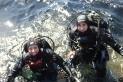 La castellarenca Paqui Serra i el moianès Marc Pedrals han guanyat per segon any consecutiu el primer premi del campionat de Catalunya d'imatge subaquàtica